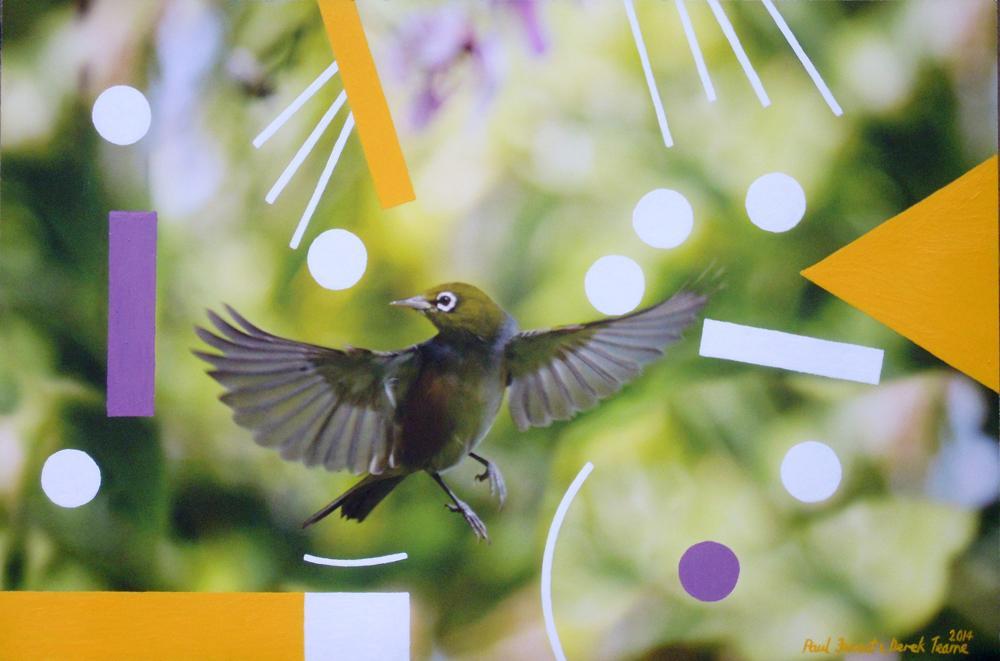In flight no.2.jpg