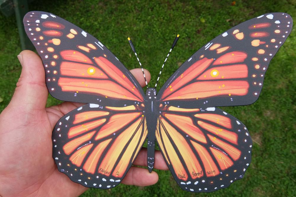 Monarch 2 sml finished.jpg