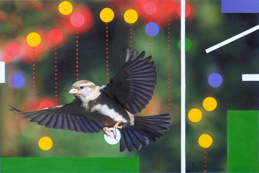 Sparrow variation 2014.jpg