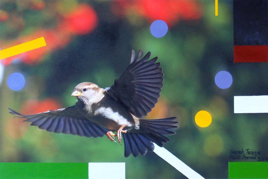 Super Sparrow 2014.jpg